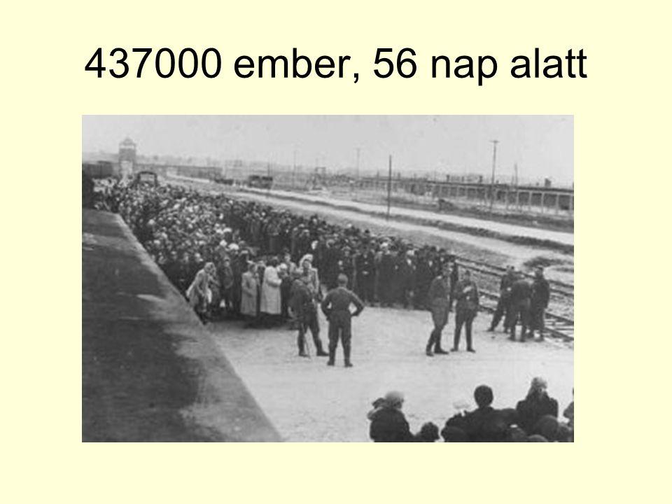 437000 ember, 56 nap alatt