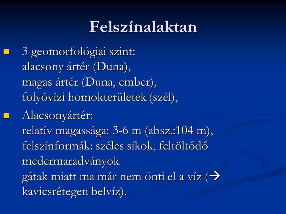 Felszínalaktan 3 geomorfológiai szint: alacsony ártér (Duna), magas ártér (Duna, ember), folyóvízi homokterületek (szél),