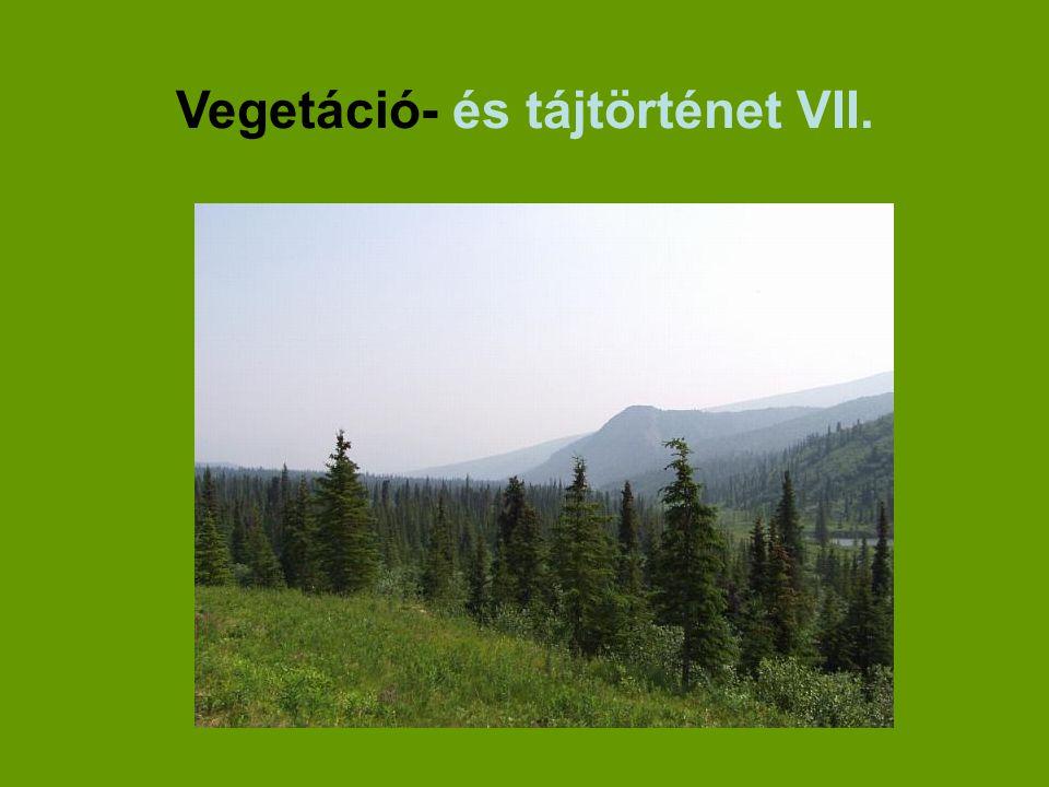 Vegetáció- és tájtörténet VII.