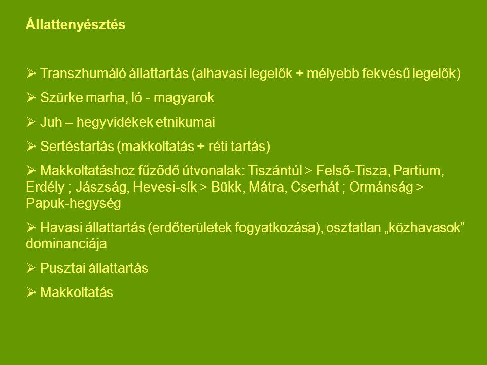 Állattenyésztés Transzhumáló állattartás (alhavasi legelők + mélyebb fekvésű legelők) Szürke marha, ló - magyarok.