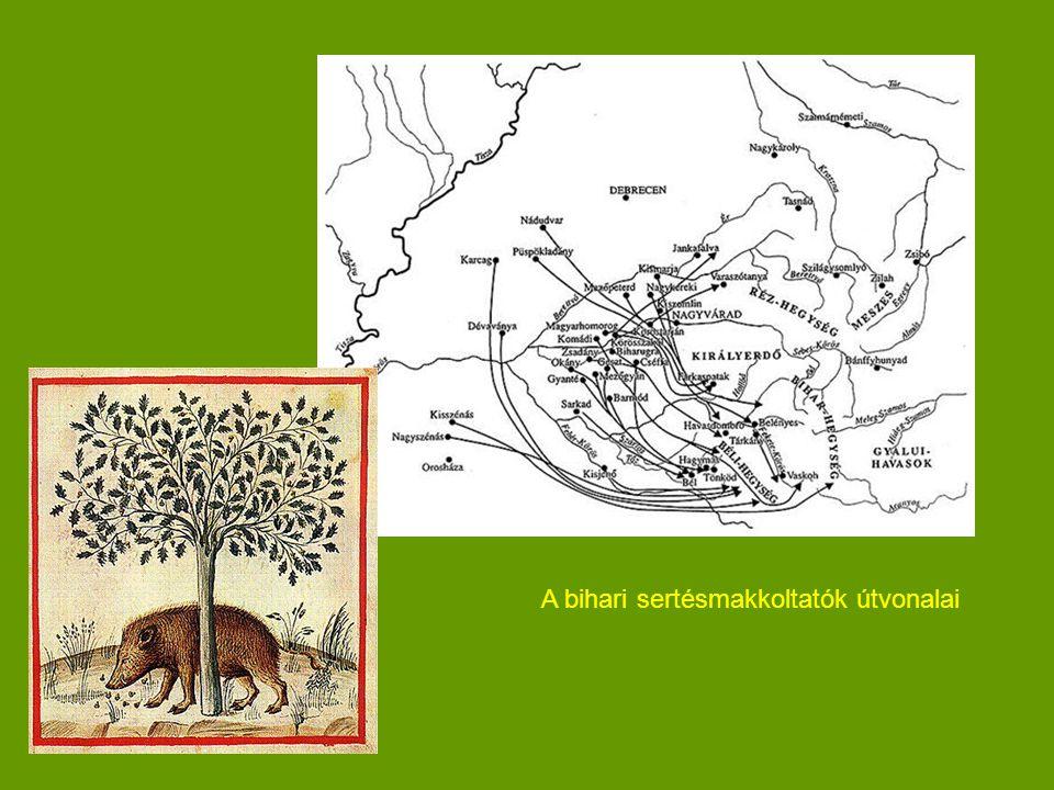 A bihari sertésmakkoltatók útvonalai