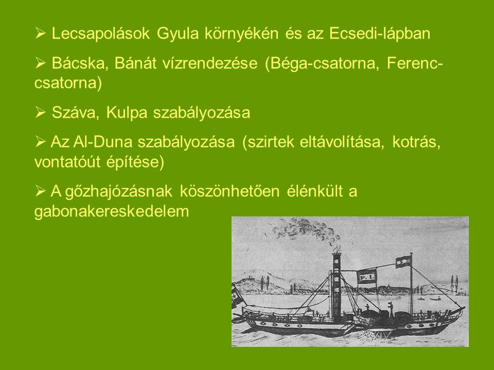 Lecsapolások Gyula környékén és az Ecsedi-lápban