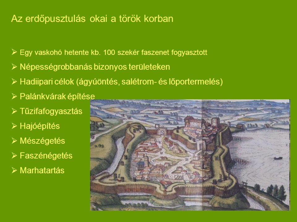 Az erdőpusztulás okai a török korban