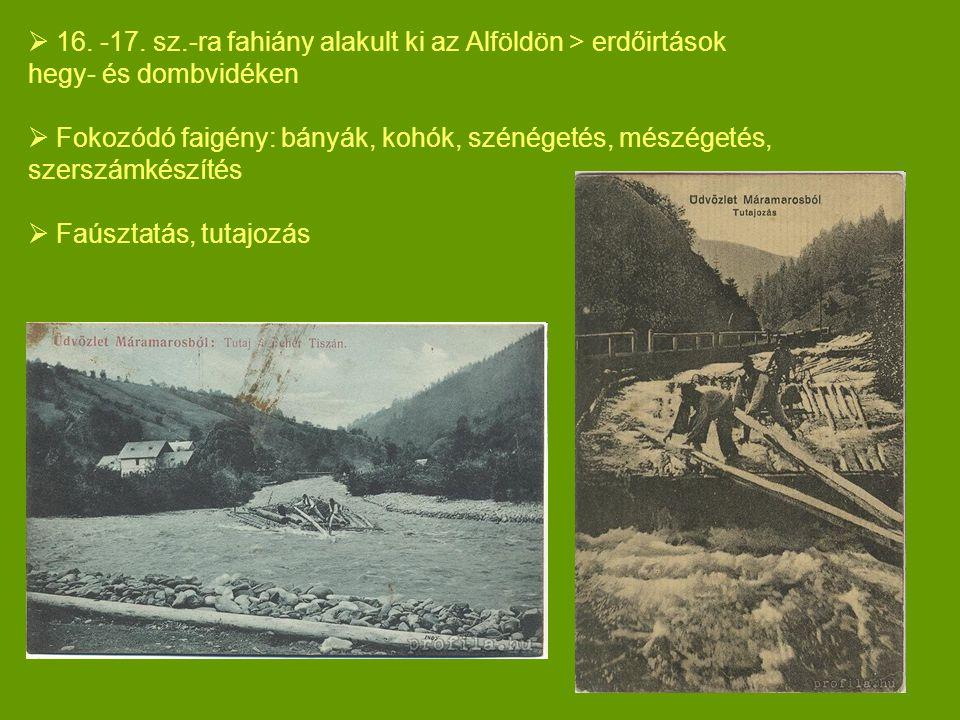 16. -17. sz.-ra fahiány alakult ki az Alföldön > erdőirtások hegy- és dombvidéken