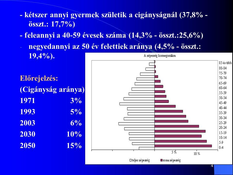 - kétszer annyi gyermek születik a cigányságnál (37,8% - összt