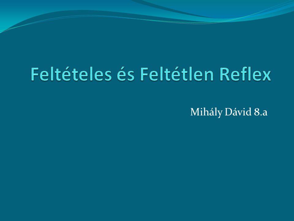 Feltételes és Feltétlen Reflex