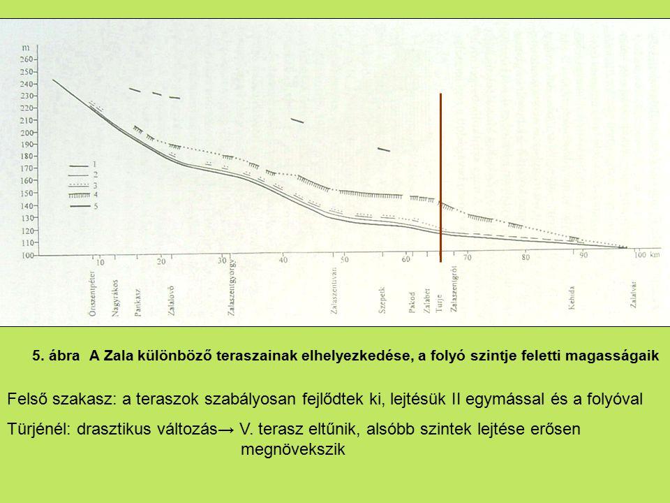 5. ábra A Zala különböző teraszainak elhelyezkedése, a folyó szintje feletti magasságaik