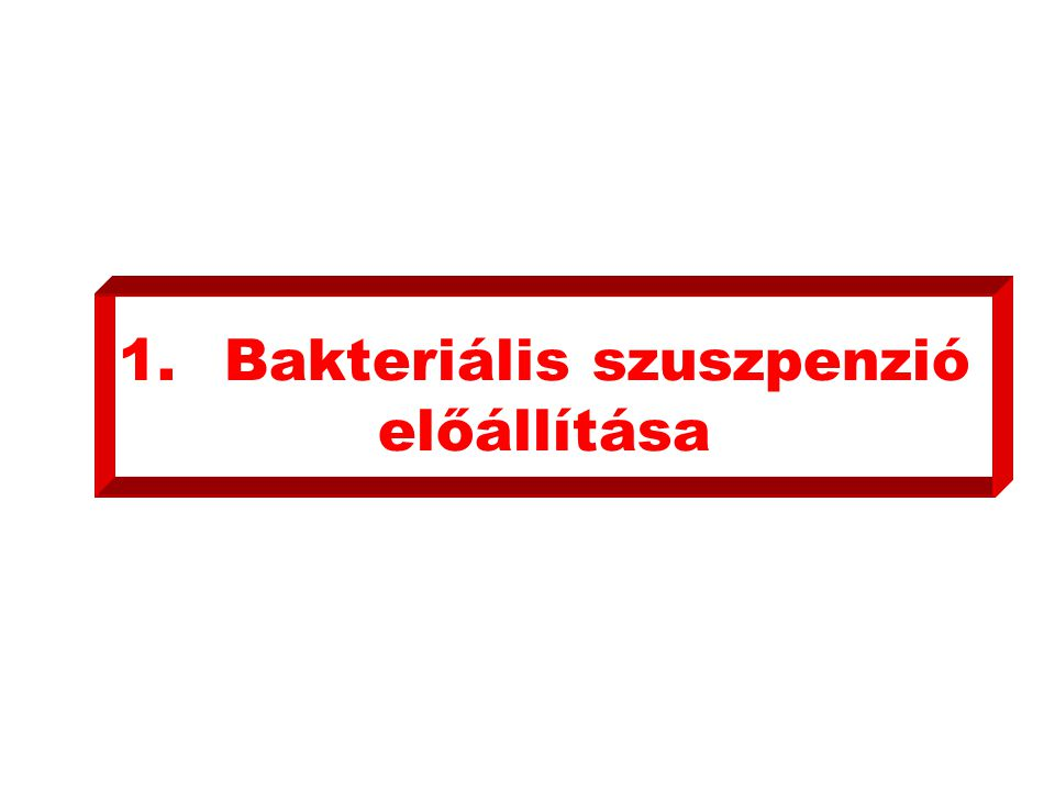 1. Bakteriális szuszpenzió előállítása