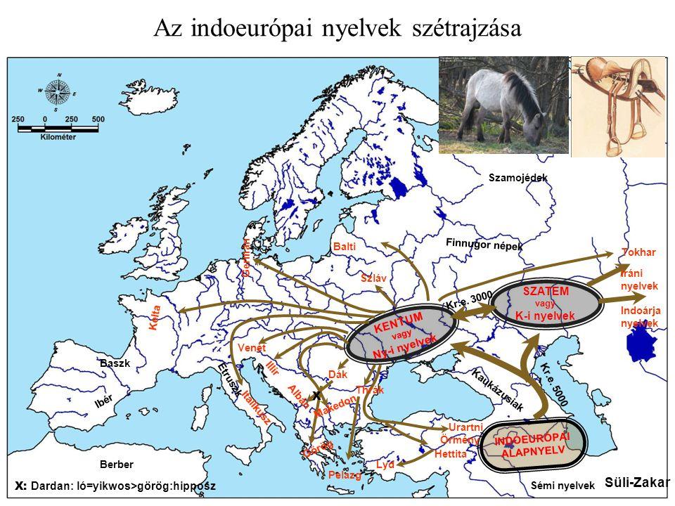 SZATEM vagy K-i nyelvek KENTUM vagy Ny-i nyelvek INDOEURÓPAI ALAPNYELV