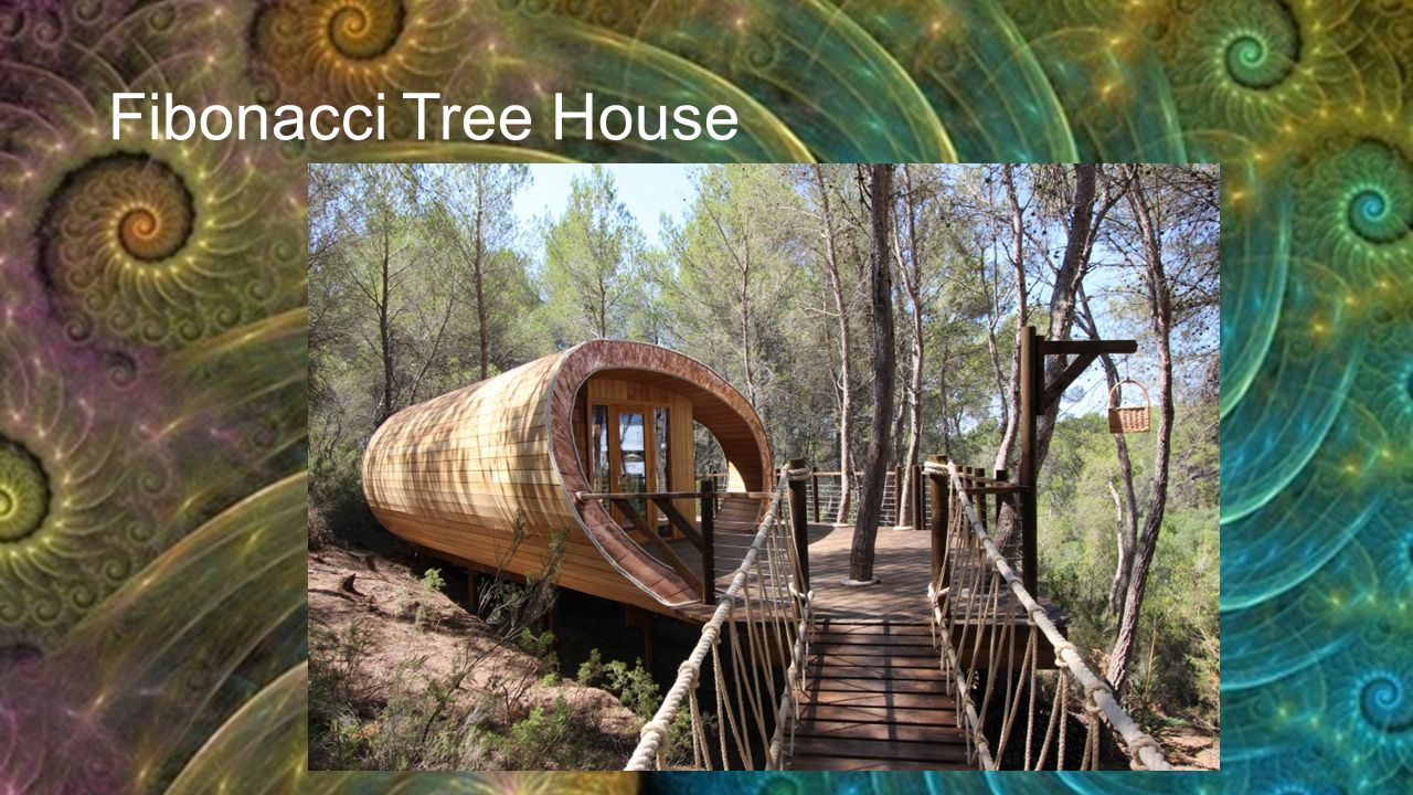 Fibonacci Tree House