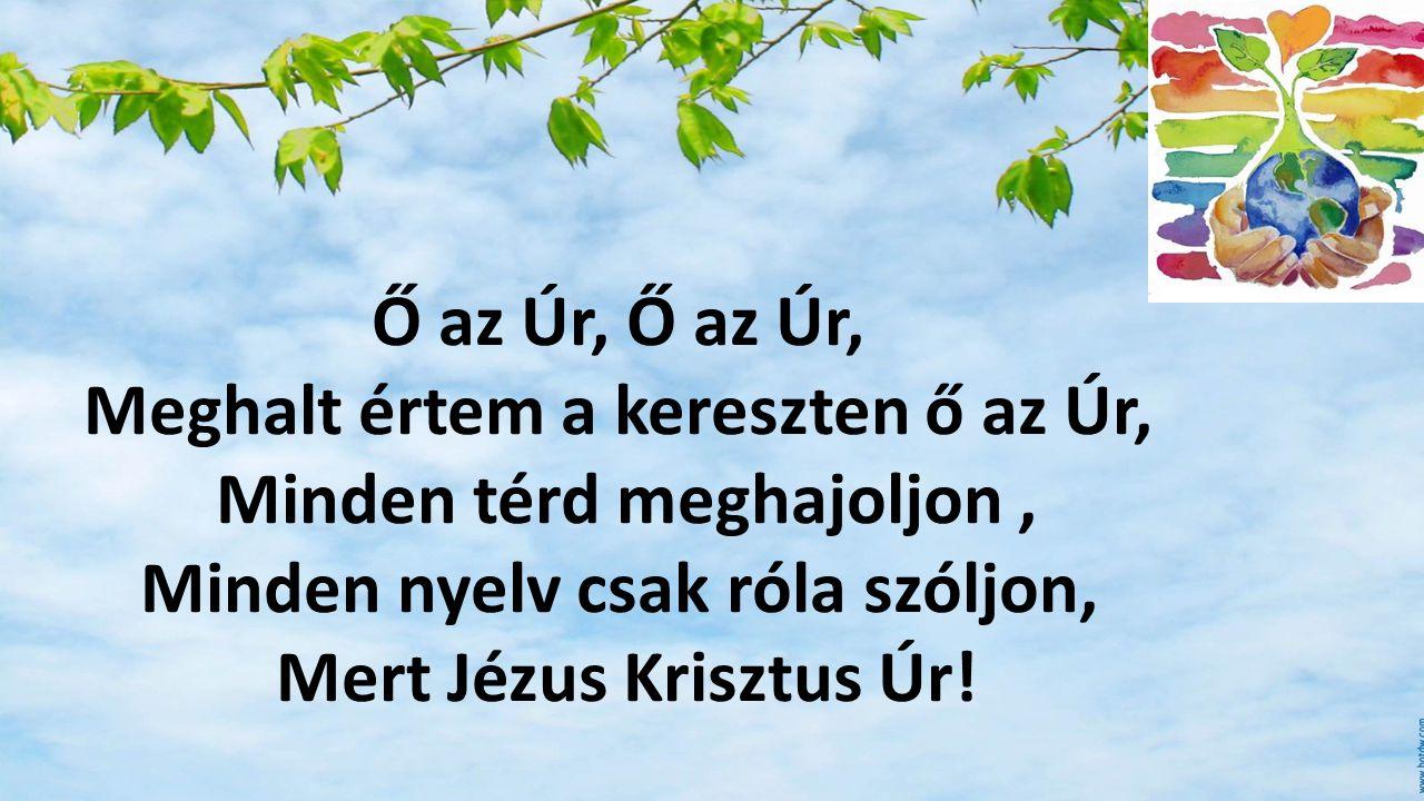 Meghalt értem a kereszten ő az Úr, Minden térd meghajoljon ,