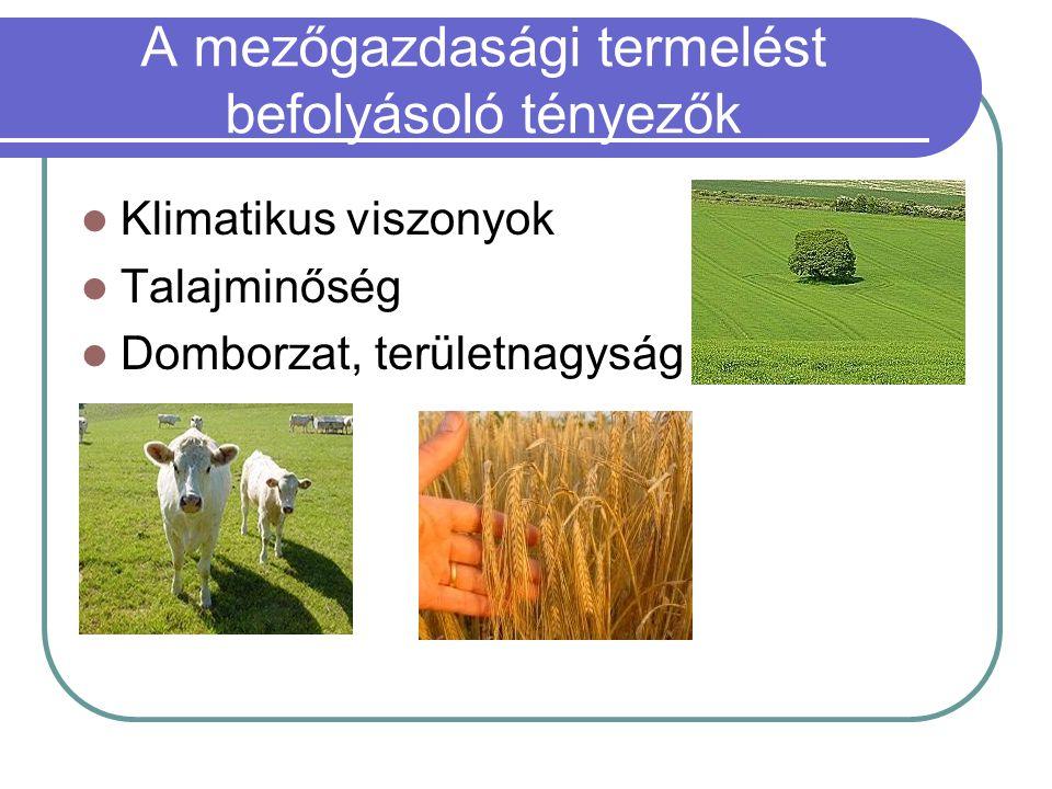 A mezőgazdasági termelést befolyásoló tényezők