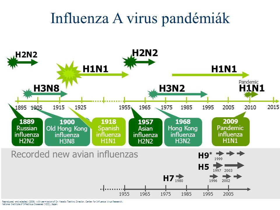 Influenza A virus pandémiák