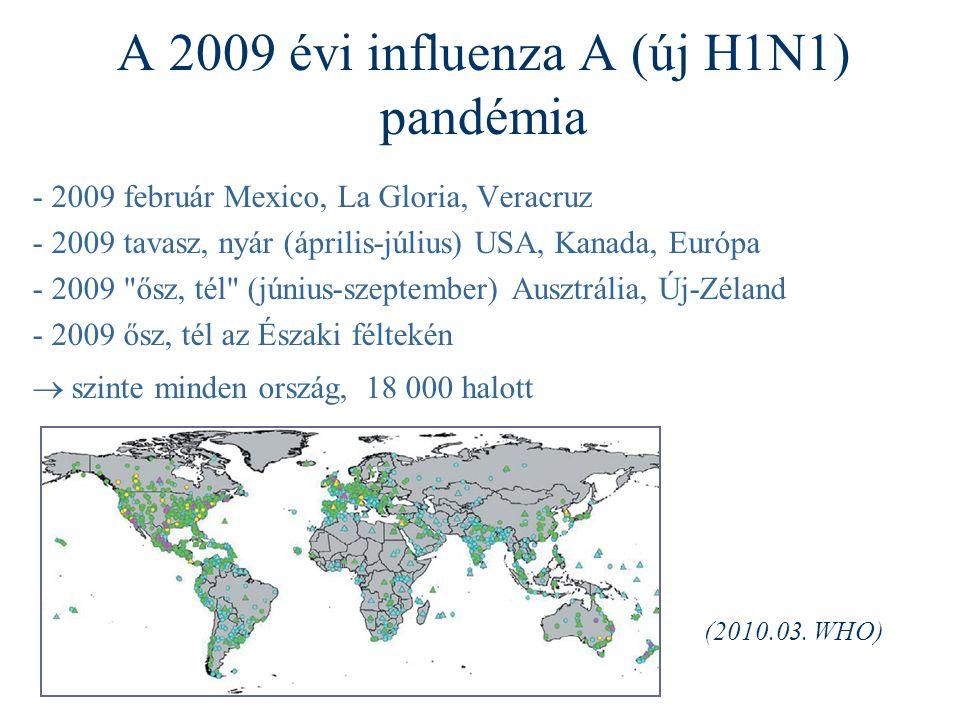 A 2009 évi influenza A (új H1N1) pandémia