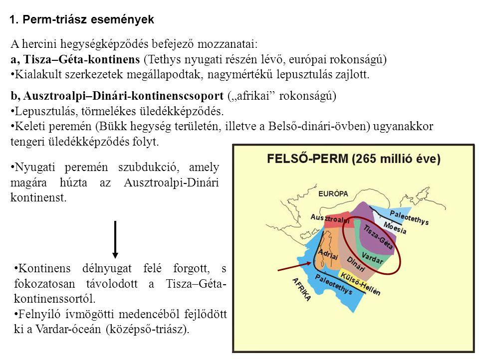A hercini hegységképződés befejező mozzanatai: