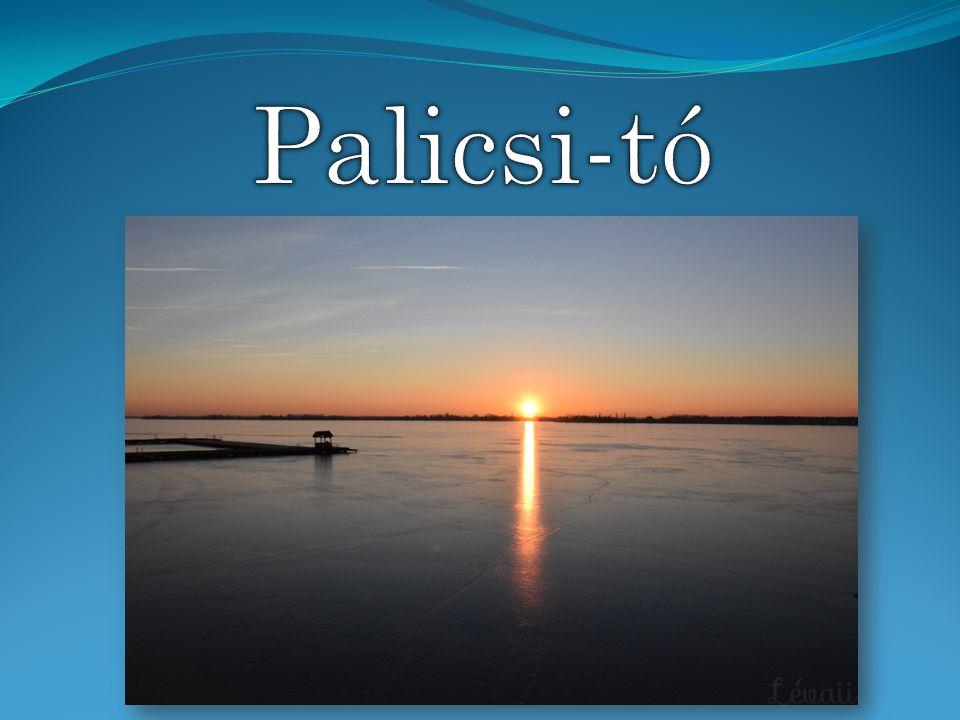 Palicsi-tó