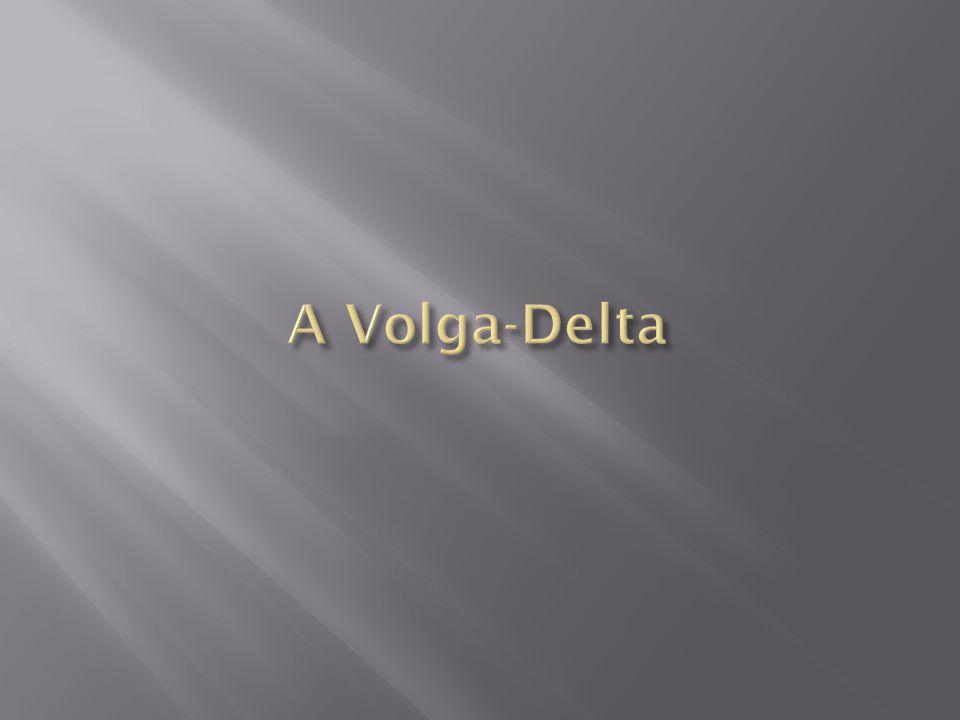 A Volga-Delta