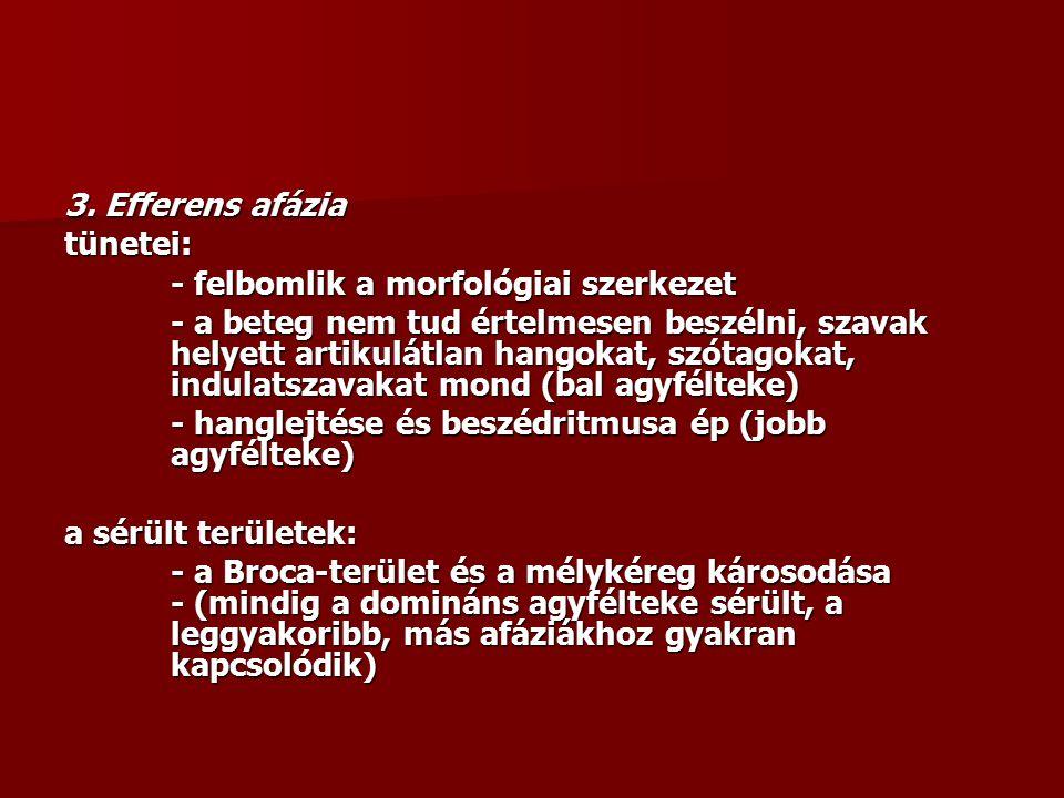 3. Efferens afázia tünetei: - felbomlik a morfológiai szerkezet.