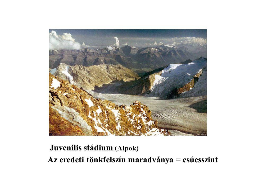 Juvenilis stádium (Alpok)
