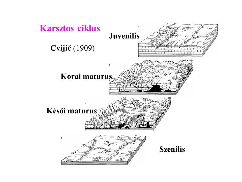 Karsztos ciklus Juvenilis Cvijič (1909) Korai maturus Késői maturus