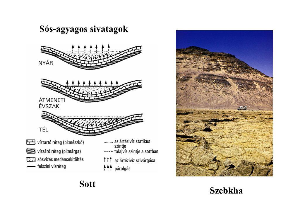 Sós-agyagos sivatagok