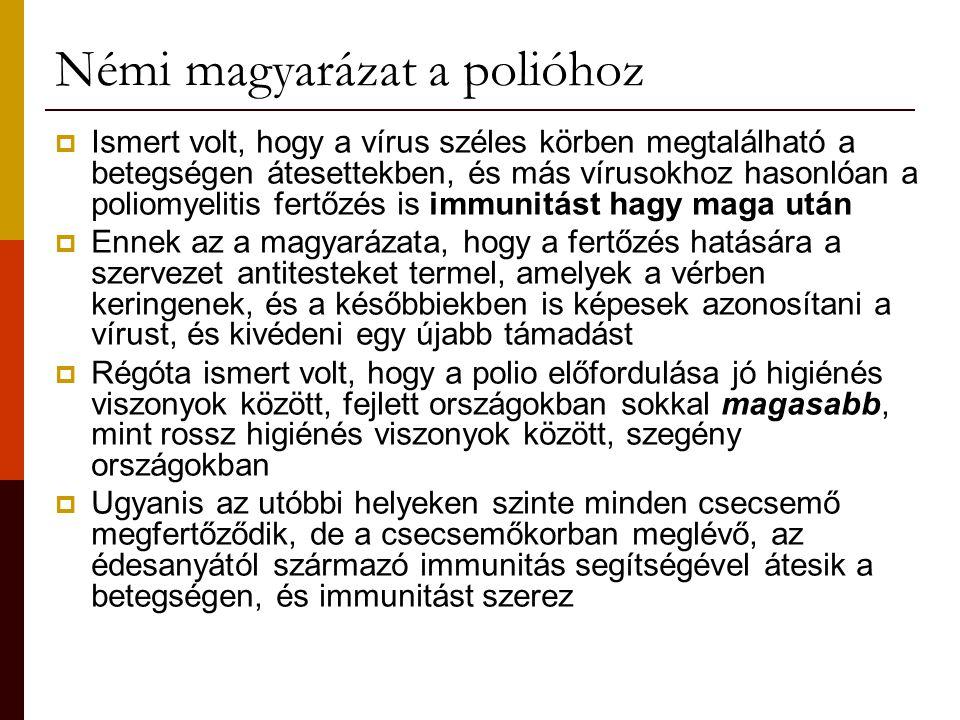 Némi magyarázat a polióhoz