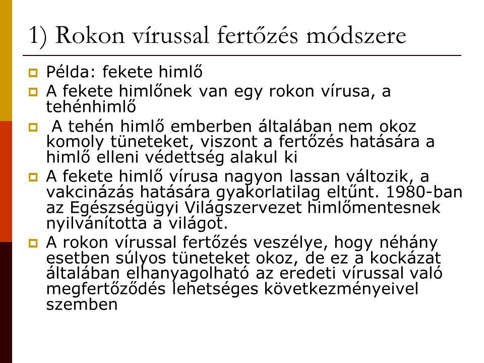1) Rokon vírussal fertőzés módszere