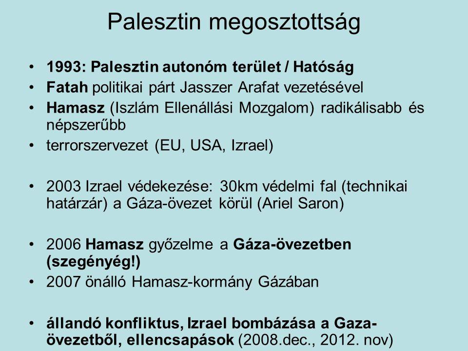 Palesztin megosztottság