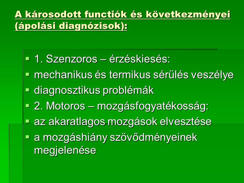 A károsodott functiók és következményei (ápolási diagnózisok):