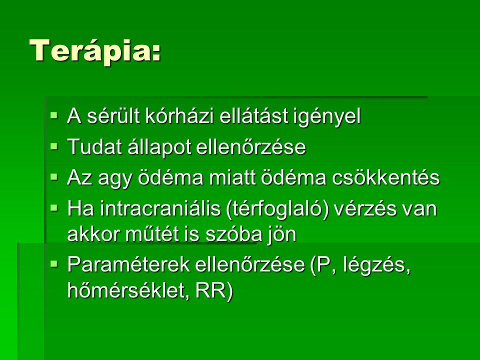 Terápia: A sérült kórházi ellátást igényel Tudat állapot ellenőrzése