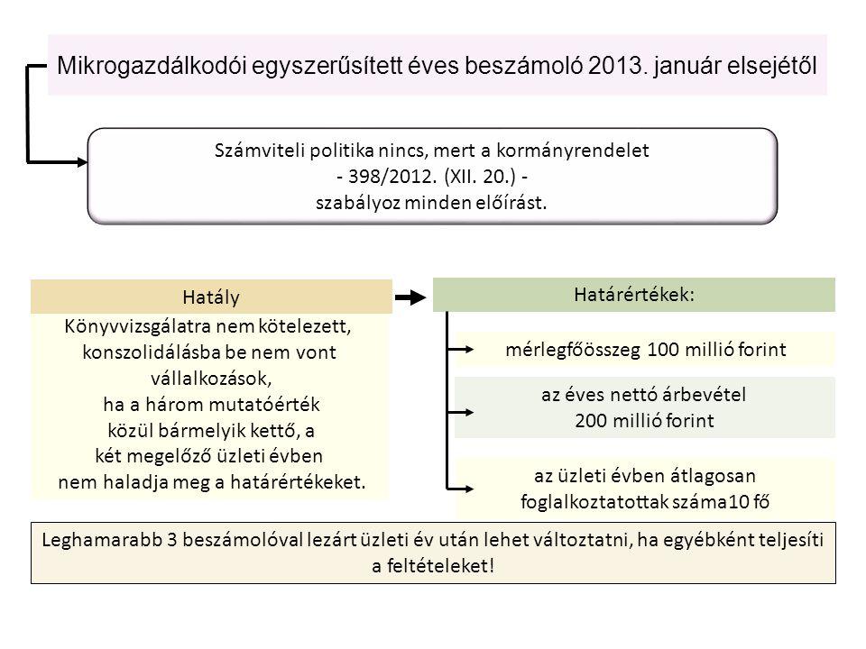 Mikrogazdálkodói egyszerűsített éves beszámoló 2013. január elsejétől