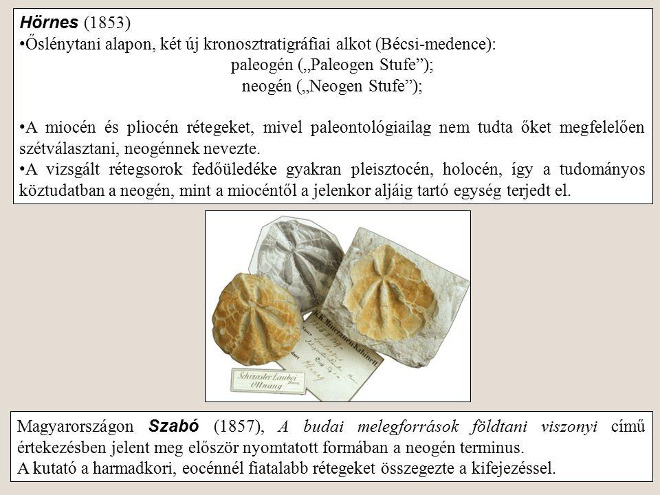 Őslénytani alapon, két új kronosztratigráfiai alkot (Bécsi-medence):