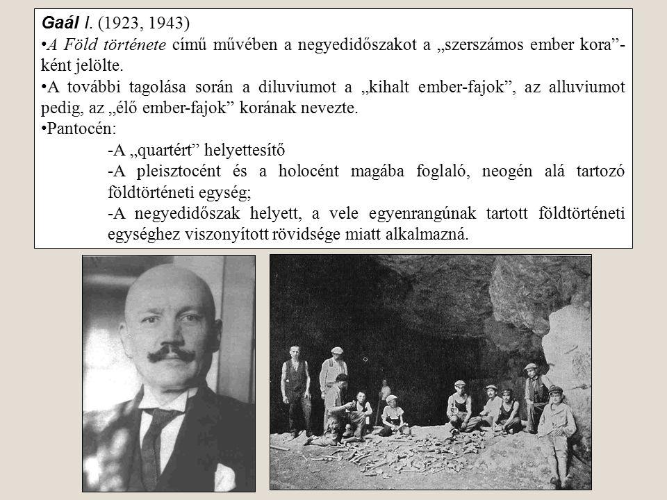 """Gaál I. (1923, 1943) A Föld története című művében a negyedidőszakot a """"szerszámos ember kora -ként jelölte."""