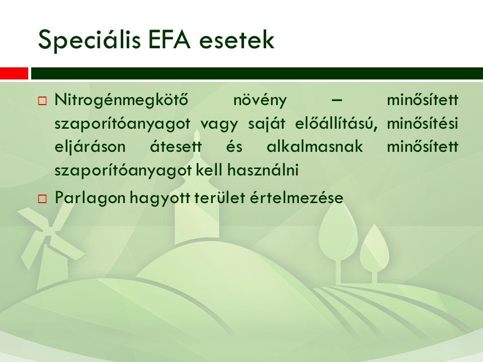 Speciális EFA esetek