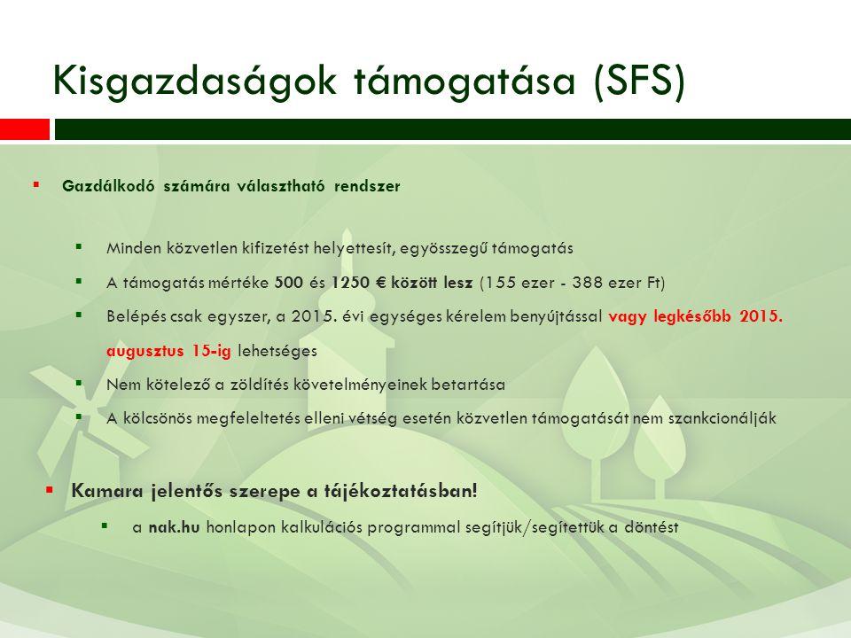 Kisgazdaságok támogatása (SFS)