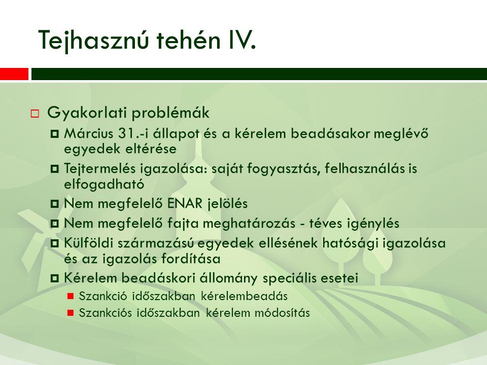 Tejhasznú tehén IV. Gyakorlati problémák