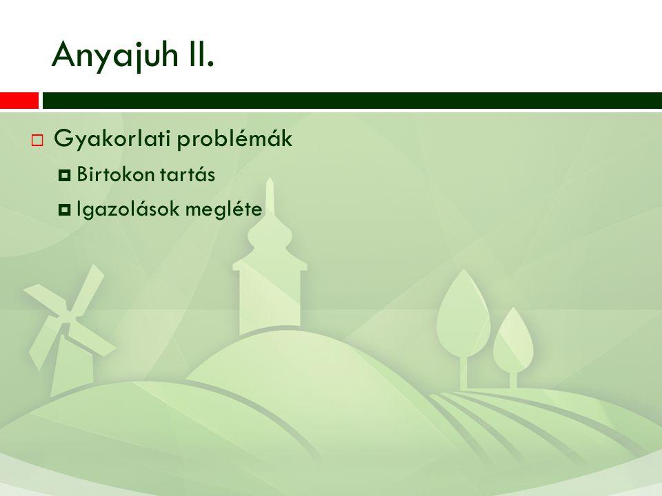 Anyajuh II. Gyakorlati problémák Birtokon tartás Igazolások megléte