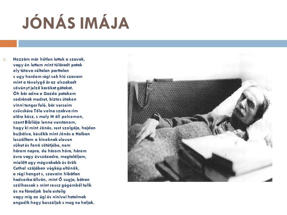 JÓNÁS IMÁJA