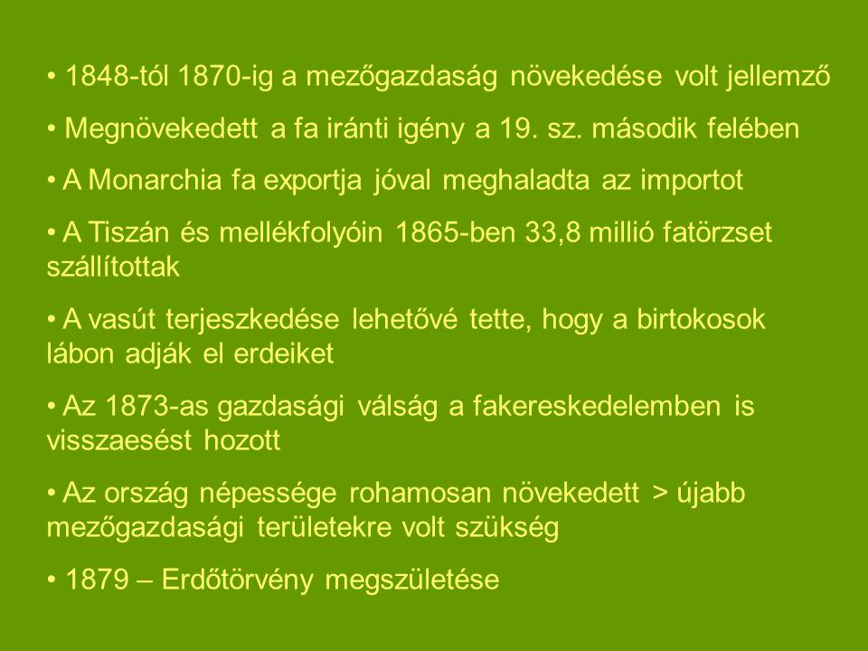 1848-tól 1870-ig a mezőgazdaság növekedése volt jellemző