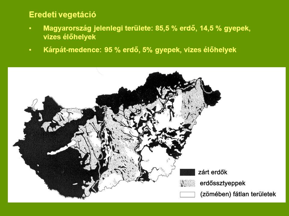 Eredeti vegetáció Magyarország jelenlegi területe: 85,5 % erdő, 14,5 % gyepek, vizes élőhelyek.