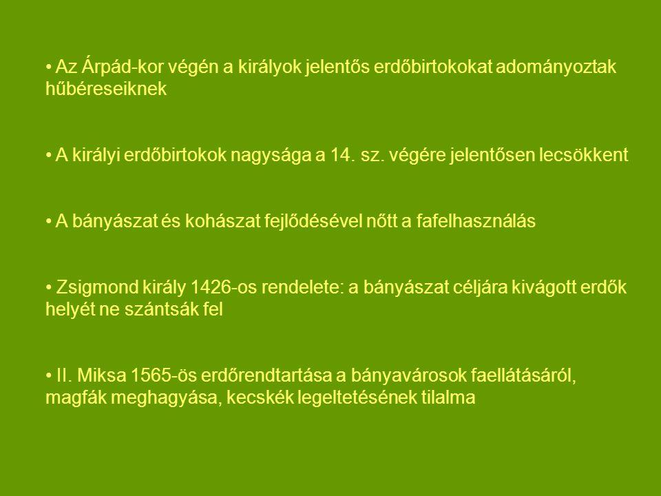 Az Árpád-kor végén a királyok jelentős erdőbirtokokat adományoztak hűbéreseiknek