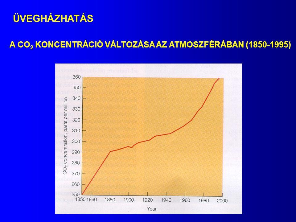 ÜVEGHÁZHATÁS A CO2 KONCENTRÁCIÓ VÁLTOZÁSA AZ ATMOSZFÉRÁBAN (1850-1995)