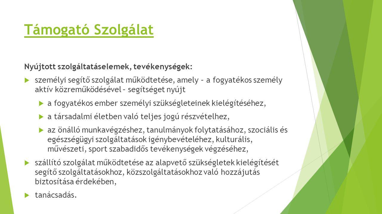 Támogató Szolgálat Nyújtott szolgáltatáselemek, tevékenységek: