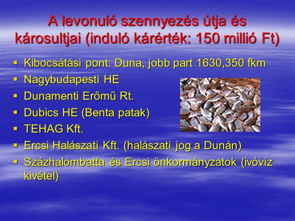 A levonuló szennyezés útja és károsultjai (induló kárérték: 150 millió Ft)