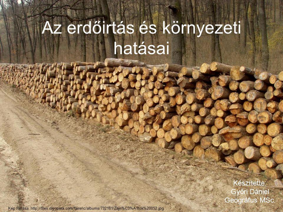 Az erdőirtás és környezeti hatásai