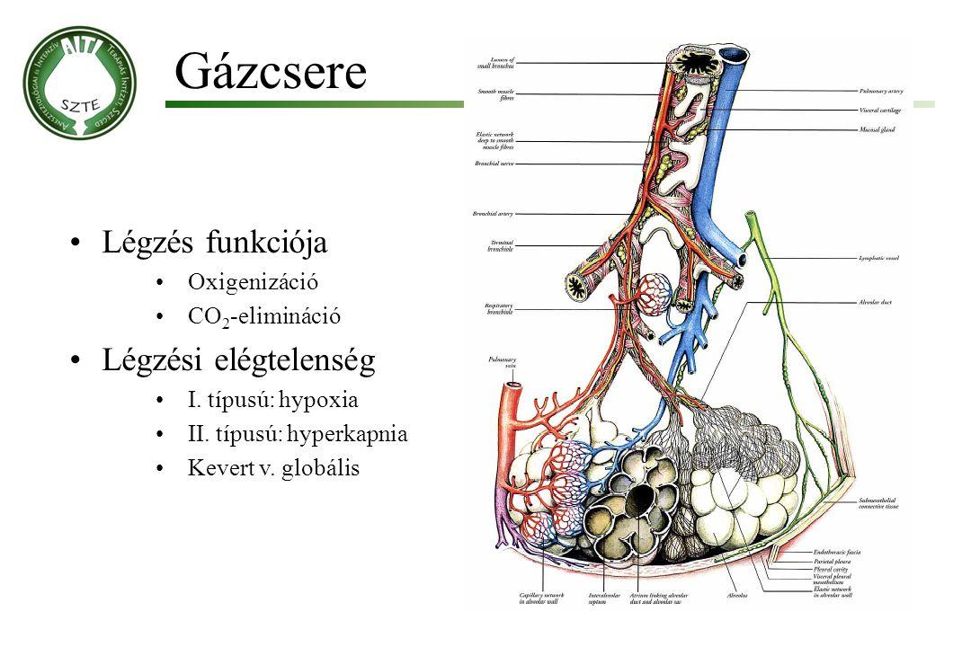 Gázcsere Légzés funkciója Légzési elégtelenség Oxigenizáció