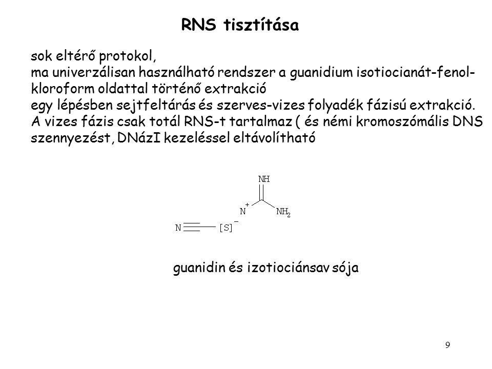 RNS tisztítása sok eltérő protokol,