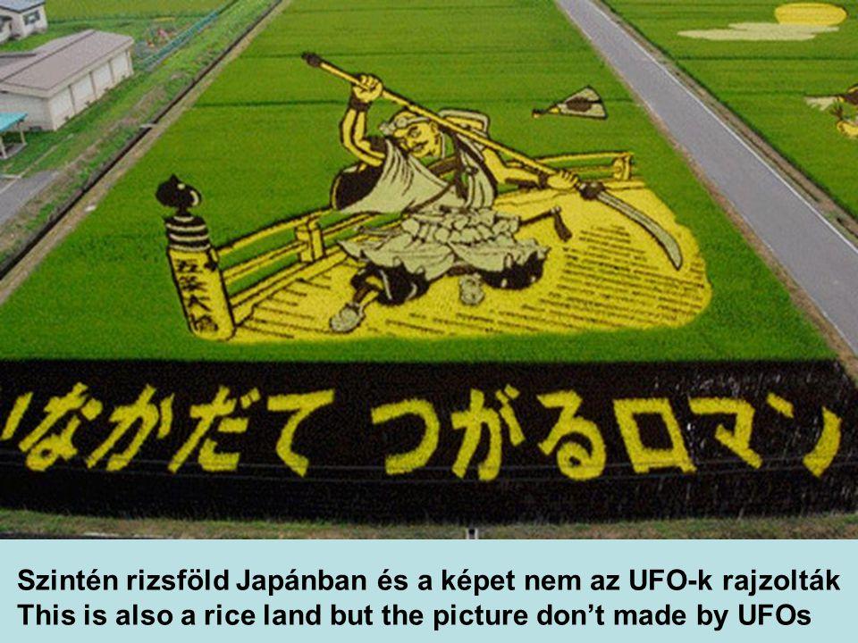 Szintén rizsföld Japánban és a képet nem az UFO-k rajzolták