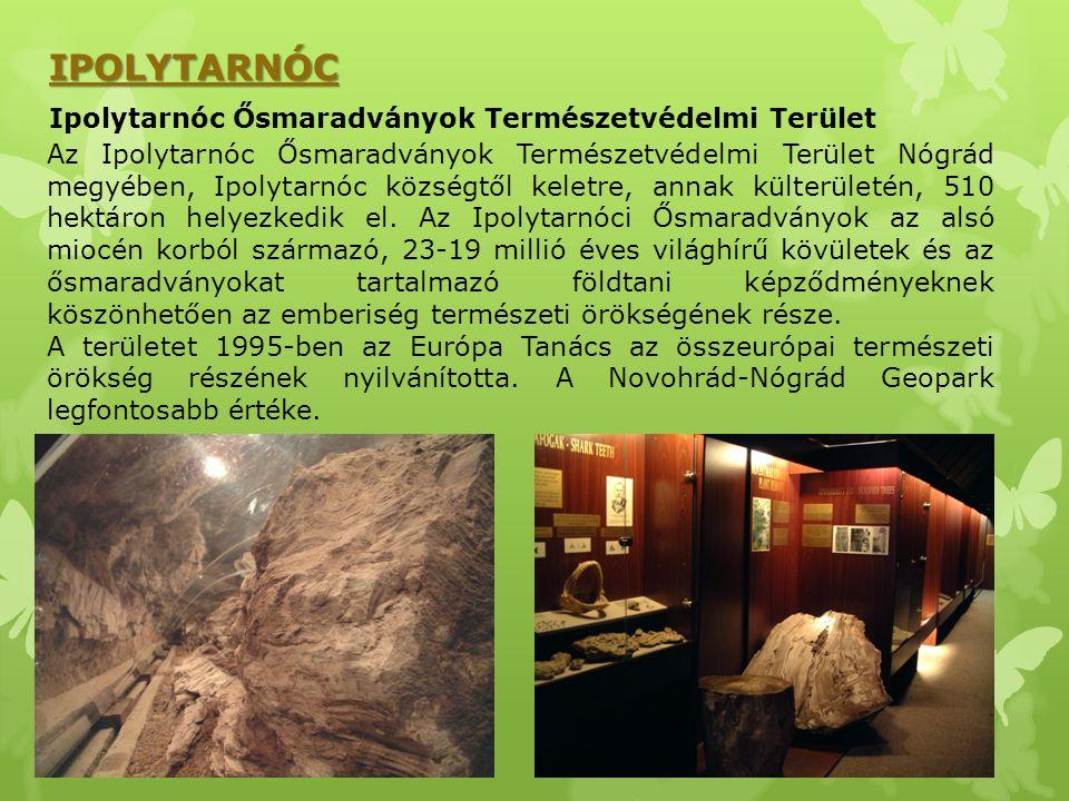 IPOLYTARNÓC Ipolytarnóc Ősmaradványok Természetvédelmi Terület