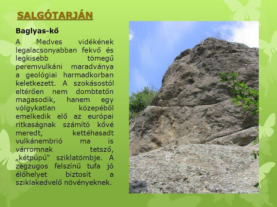 SALGÓTARJÁN Baglyas-kő